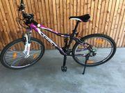 Jugendfarhrräder neu vorgeführt zu verkaufen