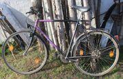 21-Gang Herren-Fahrrad von Greif mit