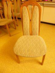 Stühle Esszimmertühle massiv gepolstert