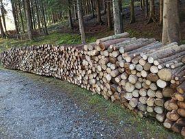 Verkaufe Brennholz Weich: Kleinanzeigen aus Frastafeders - Rubrik Holz