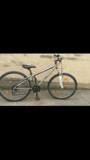 Ntb Mountainbike 26 Zoll 21
