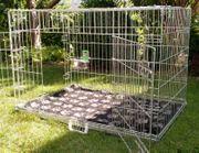 Hundekäfig Kennel - 89 cm breit