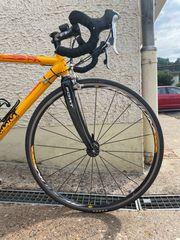 Rennrad mit Carbongabel 28
