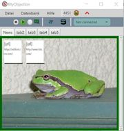 Java-Programm Webseiten Launcher - Screenshot