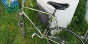 Fahrrad Rennrad Koga Miyata