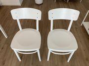 2 IKEA Idolf Stuhl Stühle