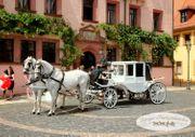 Weiße Hochzeitskutsche Landauer Pferdekutsche in