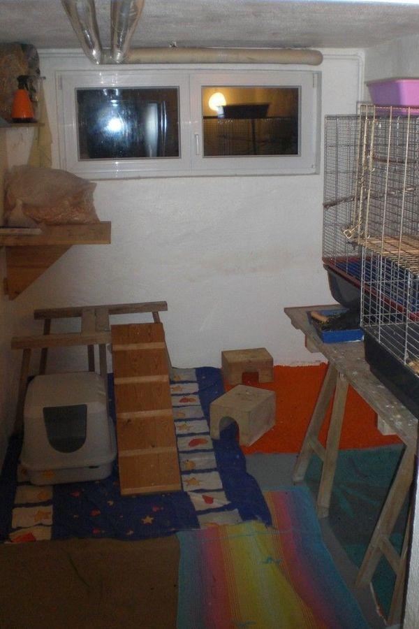 Mobile Tierbetreuung Vogel- und Kleintierpension