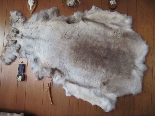RENTIER - Fell Lappland