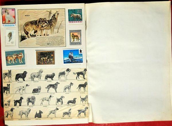 Etwas Besonderes Motiv-Briefmarkensammler Hunde und