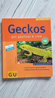 Buch Geckos