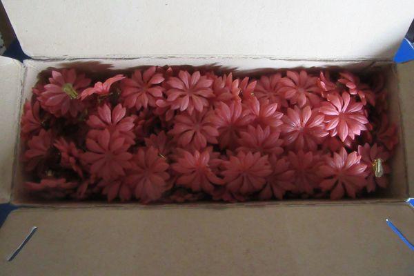 Plastikblüten mit Clip