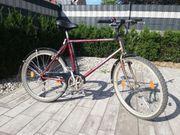 Wheeler Mountainbike