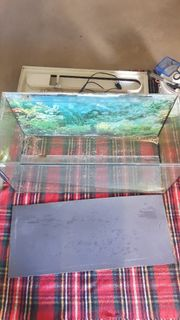 Aquarium 80x40x35cm 112l mit Zubehör