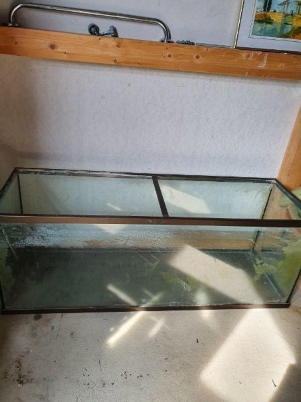 groß Aquarium