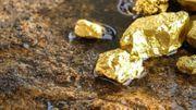 25 kg Goldsplitter und 1500