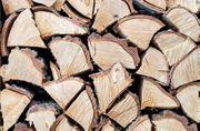 Verkaufe Fichten Brennholz
