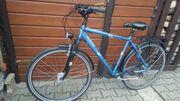 Fahrrad Vortex