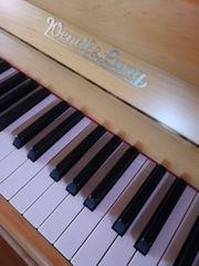 Klavier - Wendl Lung