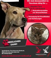 Dringend Pflegestellen für Hunde gesucht