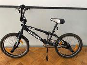BMX Fishbone FR 100 20