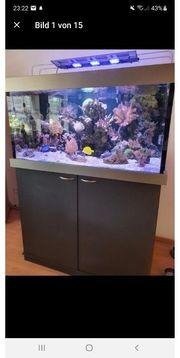 verkaufe Meerwasseraquarium 120x80x60