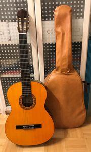 Gitarre Ariana Modell G 20