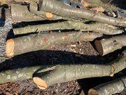 Holz Stammholz Kirschbaum