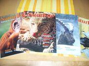 NaturFoto - Magazin für Tier- und