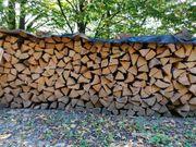 Brennholz Fichte 43 RM 100cm
