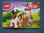 Lego Friends 41003 Olivias Fohlen
