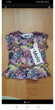 Molo Baby Shirt Gr 62 -