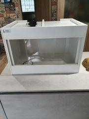 Kunststoffterrarium 60x40x40 von Pythonking mit