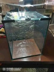 2x Nano Aquarium Aquael mit