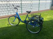 Elektrodreirad - E Bike Wulfhorst Gelgenheit