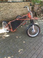 Dogtrike Trainingswagen Dogscooter Husky