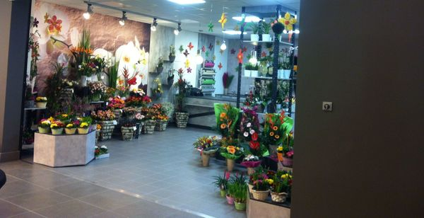 Suchen Nachmieter für unserem Blumenladen