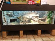 Terrarium Wüstenterrarium XL mit oder