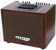 Abverkauf PROFI Akustik-Verstärker Gitarren Amp
