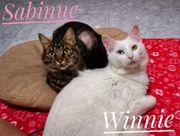 Sabine und Winnie Brüderlein und