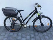 Mountainbike Tecnobike 21Gang Shimano RH43cm