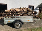 1 Pkw Anhänger Fichtenbrennholz