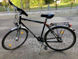 my Boo Bambus Fahrrad my Ashanti Ausstellungsbike neu in