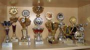 Pokale verschiedene Größen