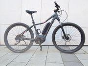 Trek Powerfly E-Bike MTB Bosch