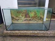 Aquarium Terrarium für Hamster
