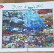 VERSCHIEDENE PUZZLE 2000 1000 TEILE