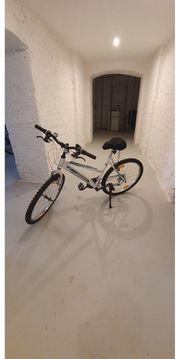 Mountain bike 26 zoll für