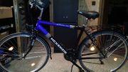 McKenzie Fahrrad Herren