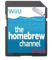 Wii U Erweiterung 64GB SD-Karte